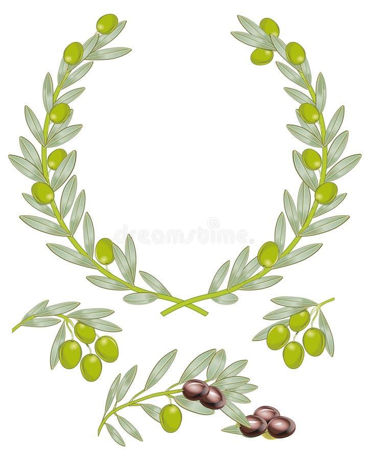 De kroon van de olijf vector illustratie