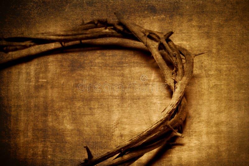 De kroon van Jesus-Christus van doornen stock foto's