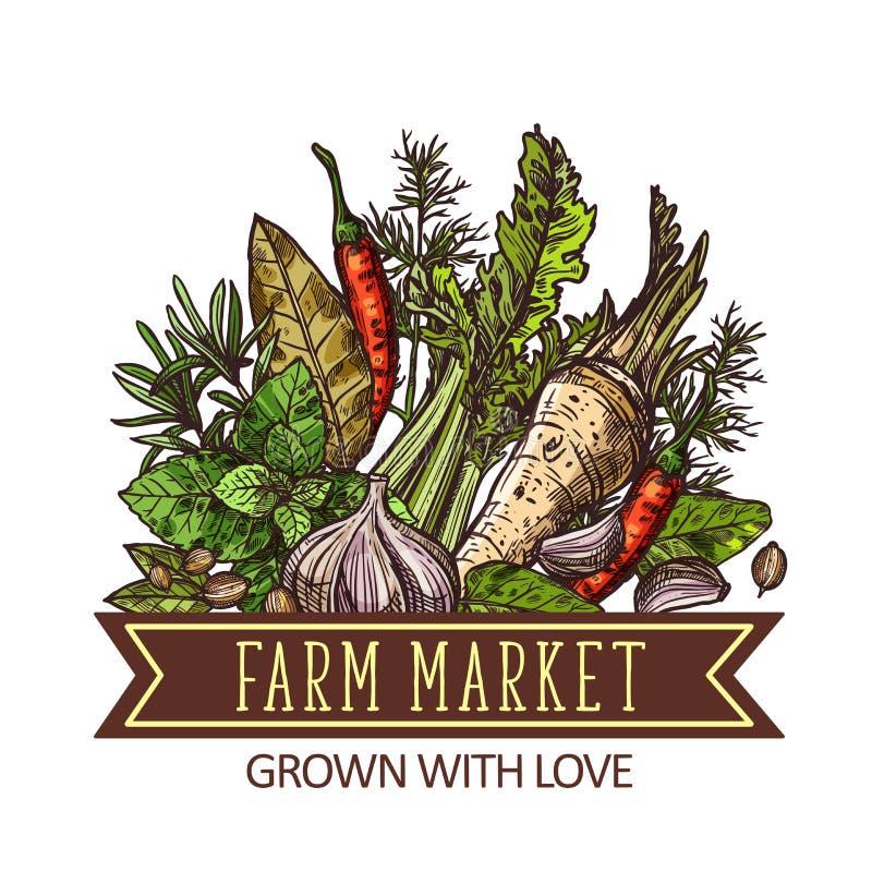 De kruiden, de kruiden en de groente van de landbouwbedrijfmarkt stock illustratie