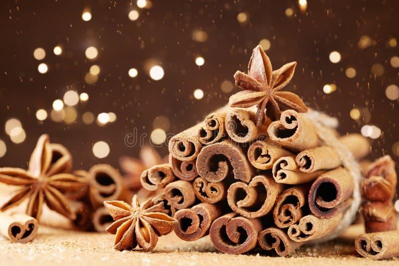 De kruiden van Kerstmis Anijsplantster, pijpjes kaneel en bruine suiker stock foto