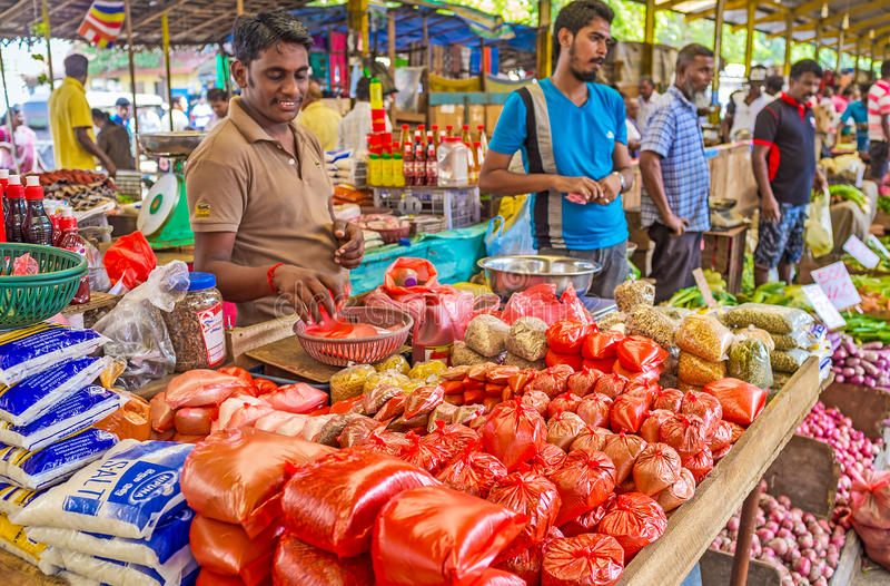 De kruiden van Sri Lankan stock fotografie