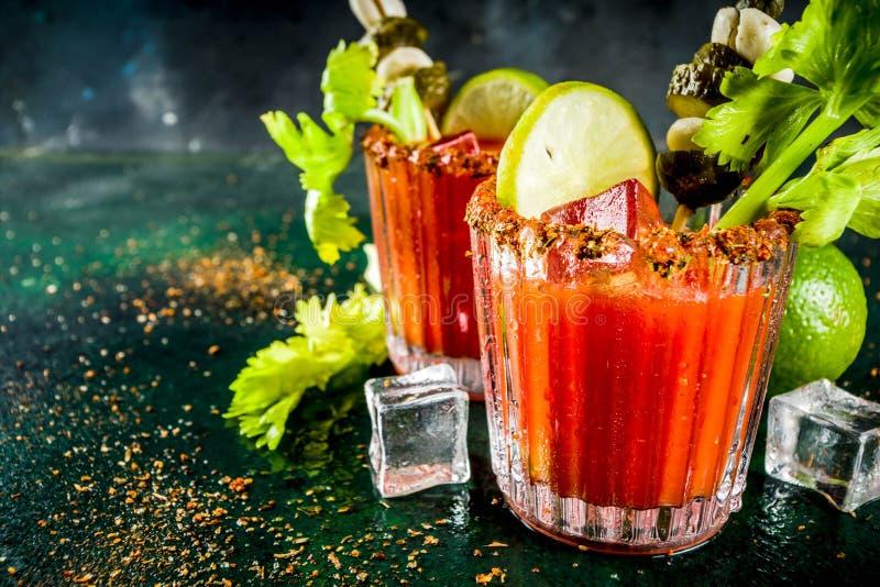 De kruidige bloedige cocktail van Mary met versiert royalty-vrije stock fotografie