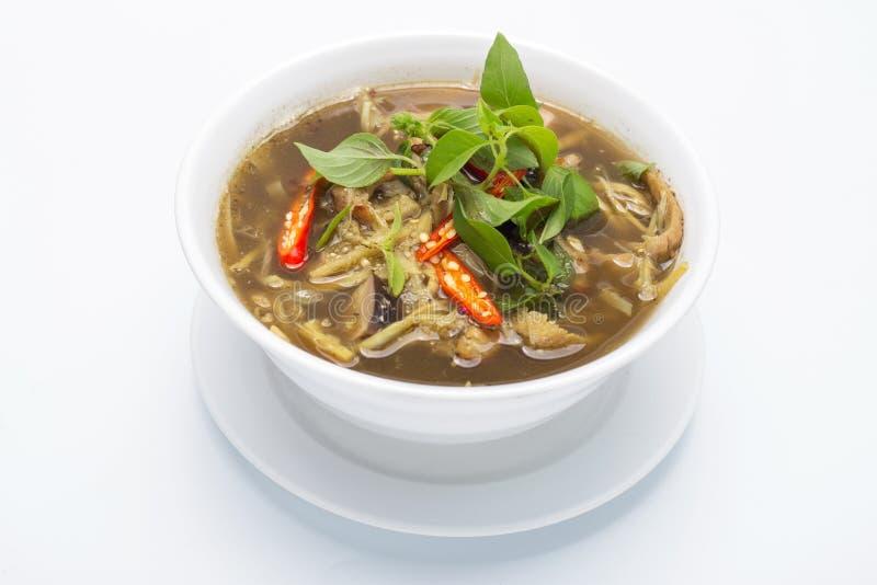 De Kruidige Salade van de bamboespruit stock afbeelding