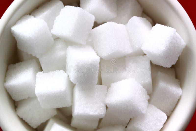 De kubus van de suiker in theewelp stock foto