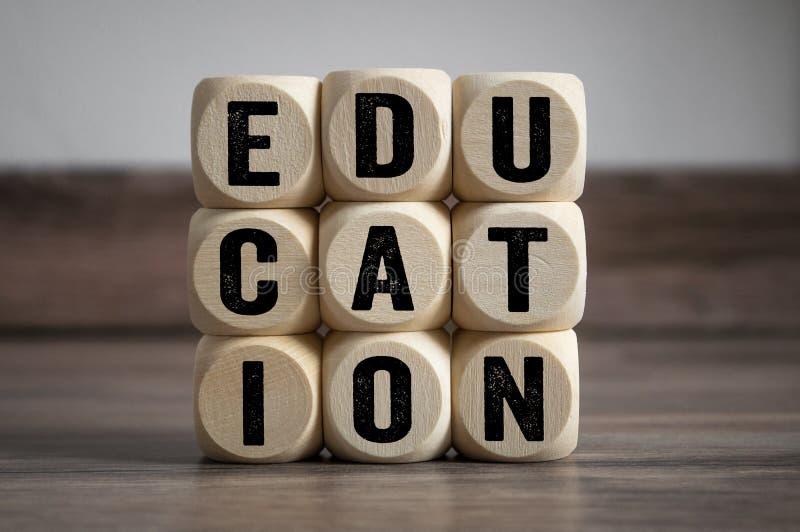 De kubussen en dobbelen met term onderwijs stock foto