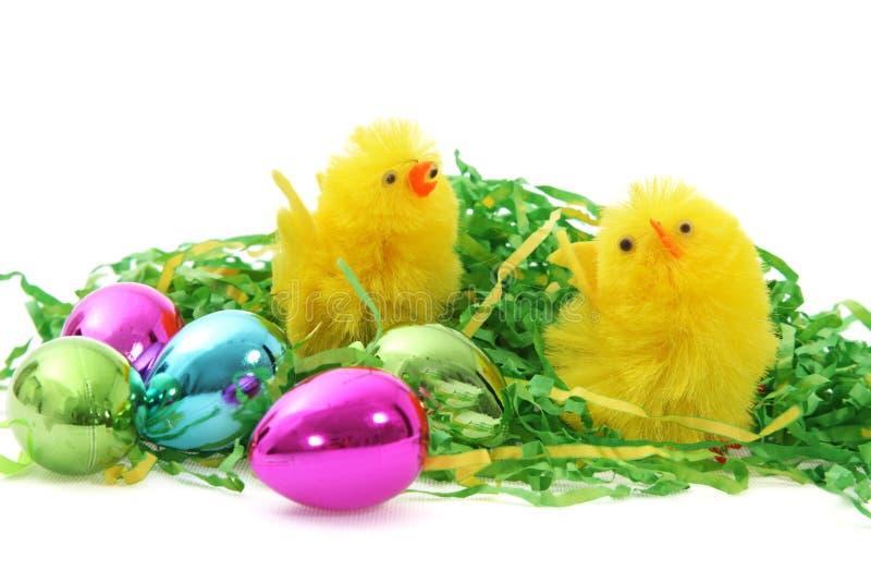 De kuikens en de eieren van Pasen stock afbeeldingen