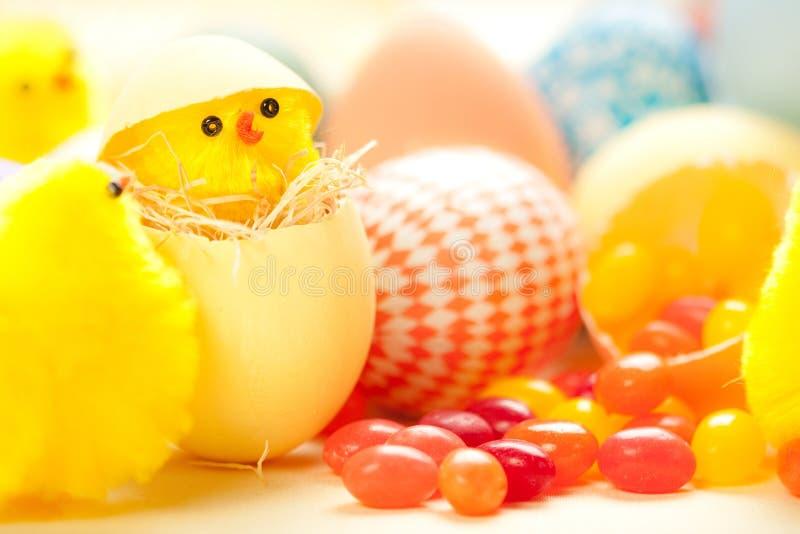 De Kuikens van Pasen stock afbeeldingen