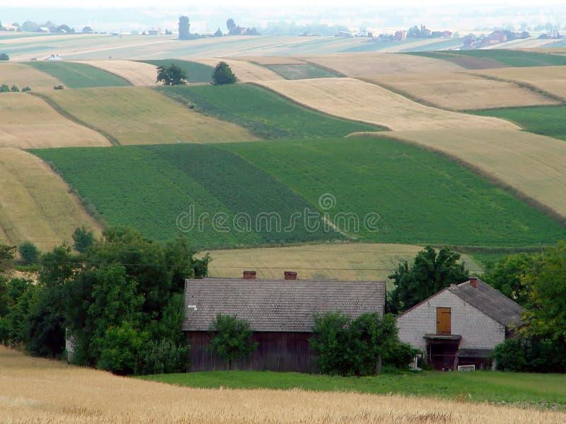 De kulöra patchworkfälten av lappen på kullarna royaltyfri bild