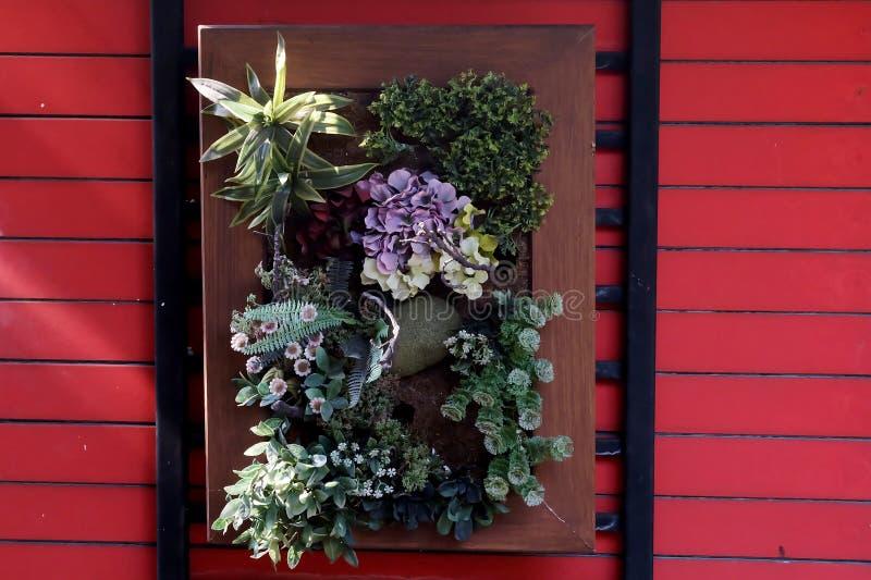 De kunstbloemen in het houten kader hangen op rode houten muur en ruimte voor schrijven verwoording, goede idee van het lage kost stock foto