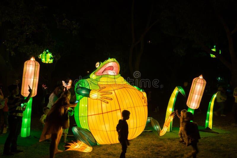 De kunstinstallatie van Lantasialichten in Johnstone-Park tijdens Witte Nacht Geelong stock foto