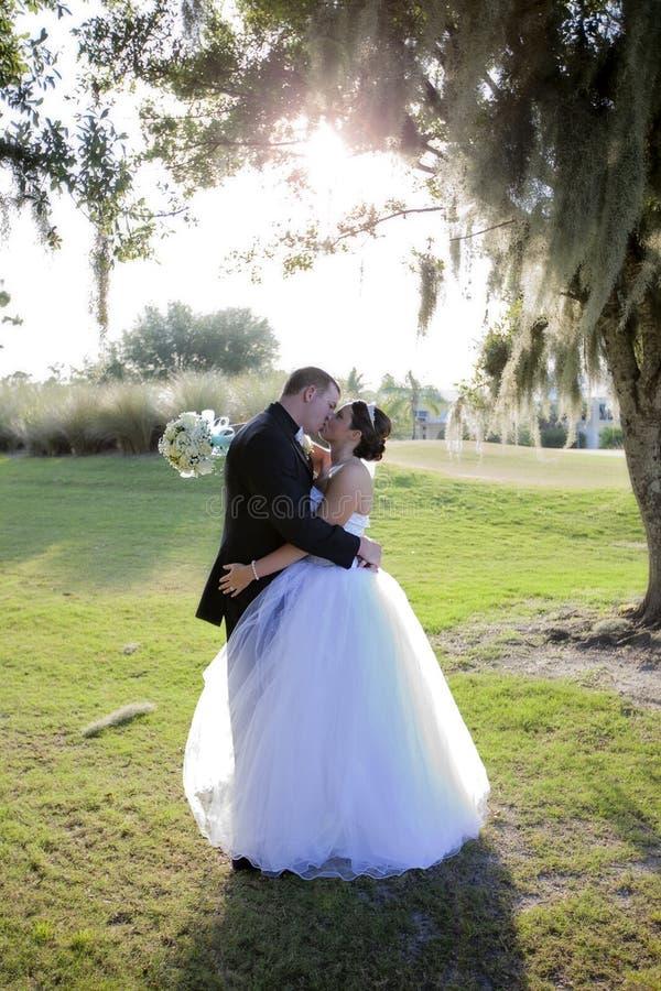 De kus van de bruid en van de Bruidegom royalty-vrije stock afbeeldingen