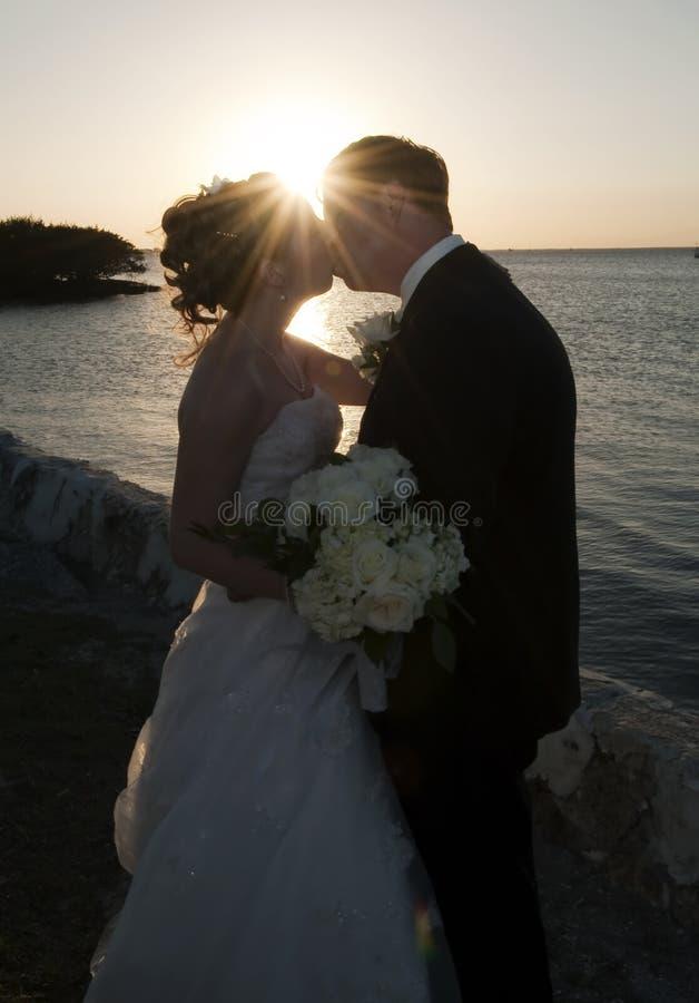 De kus van de bruid en van de Bruidegom stock foto's