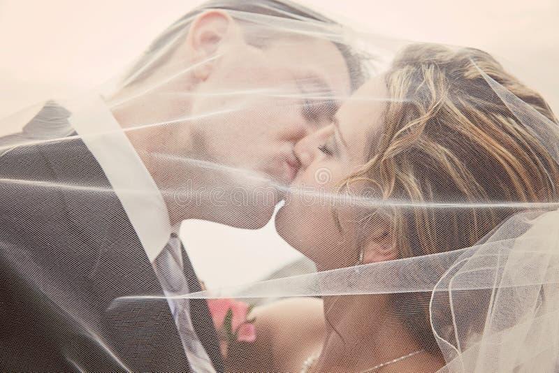De kus van de bruid en van de bruidegom royalty-vrije stock foto