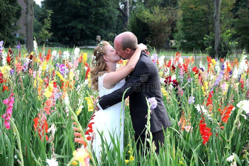 Download De Kus van het huwelijk stock afbeelding. Afbeelding bestaande uit geluk - 54076653
