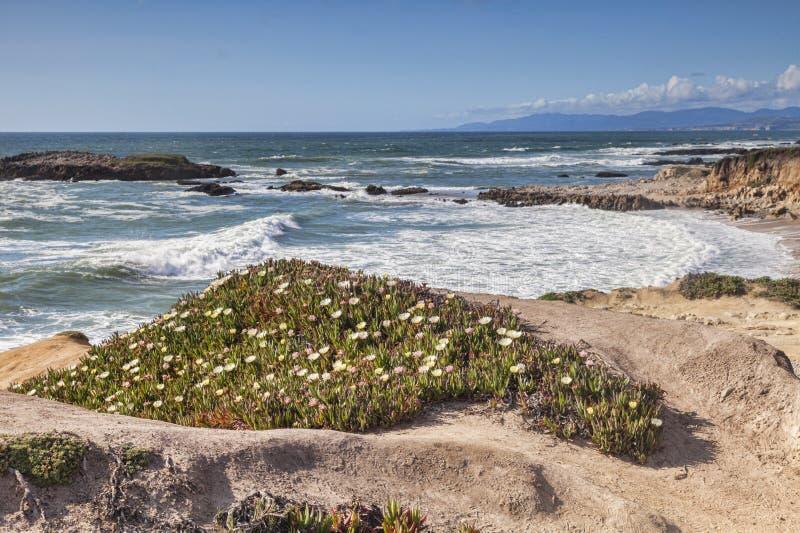 De Kust Bean Hollow State Beach van Californië stock afbeeldingen