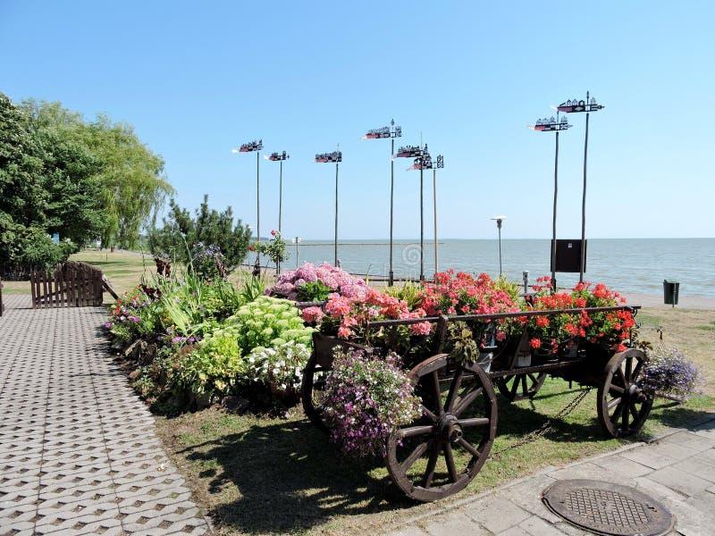De kust van de Curonianbaai, Litouwen royalty-vrije stock afbeeldingen