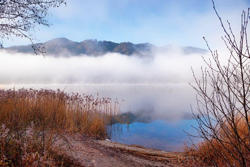 De kust van het Schlierseemeer in de herfst, met ochtendmist royalty-vrije stock afbeelding