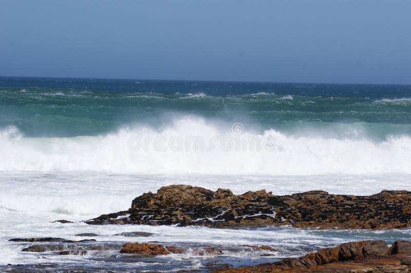 De kust van Kaapstad royalty-vrije stock fotografie