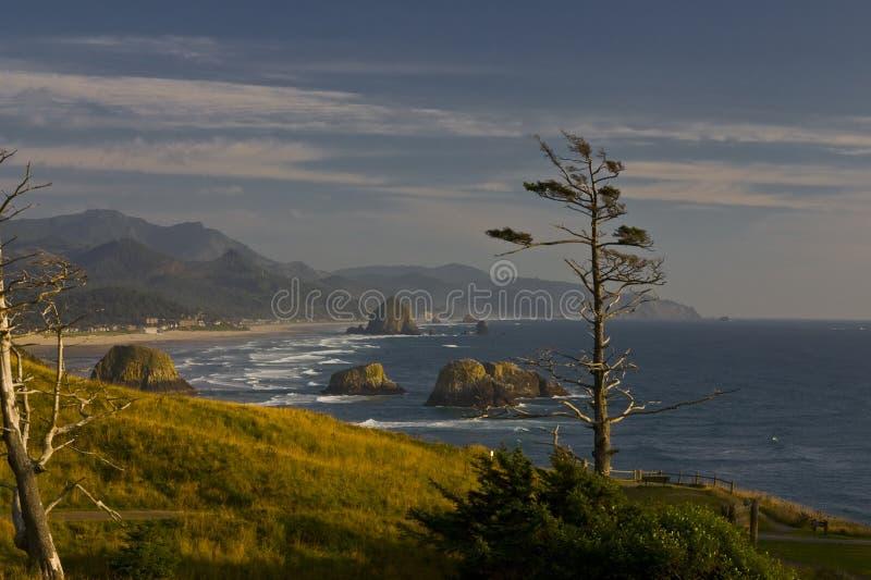 De Kust van Oregon royalty-vrije stock afbeelding