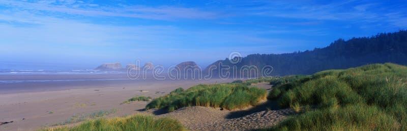 De kust van Oregon stock afbeelding