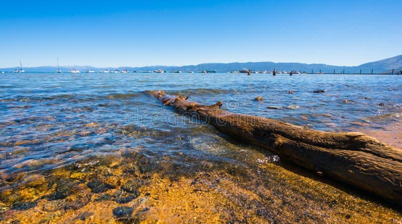 De Kust Van Tahoe Van Het Meer Stock Foto