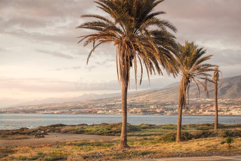 De kust van Tenerife bij zonsondergang stock afbeeldingen