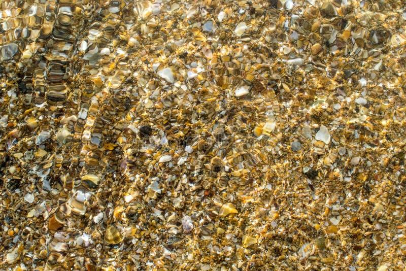 De kust van de Zwarte Zee met geel zand dat en kleine shells wordt uitgestrooid stock foto