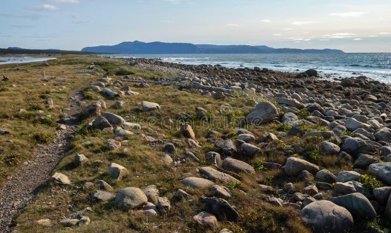 De kustgeologie Gros Morne stock fotografie