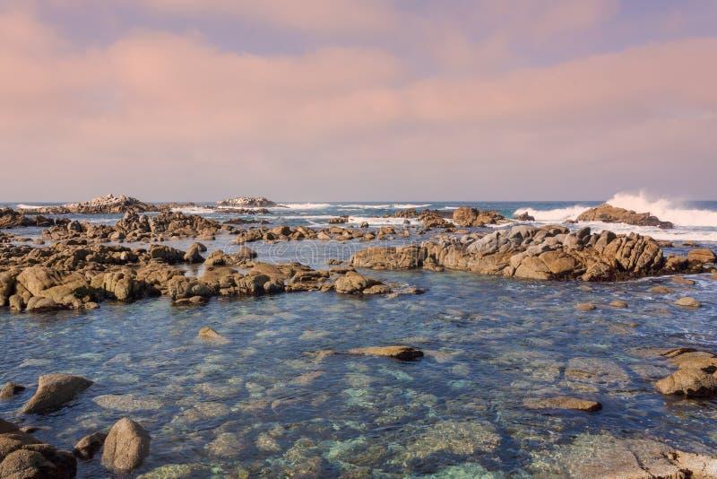 De Kustlandschap van Californië stock foto