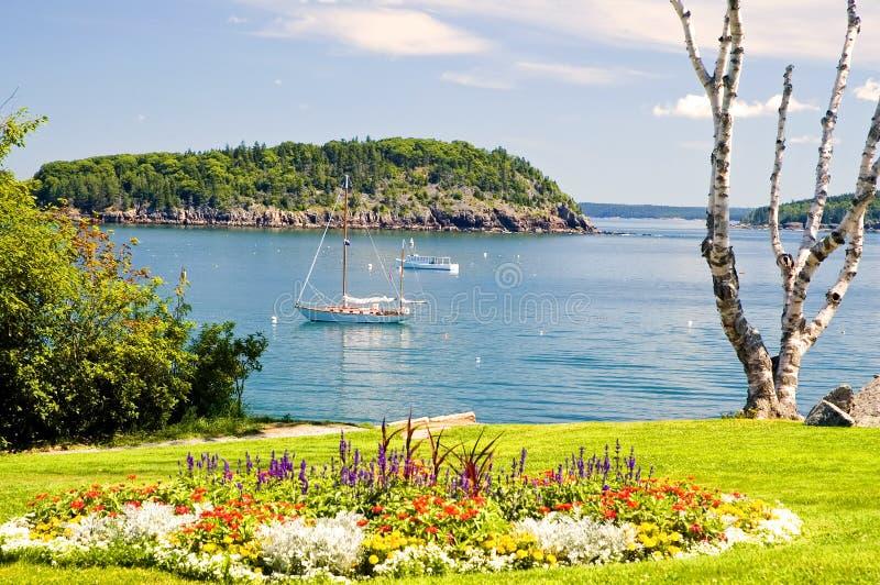 De kustlijn en de zeilboot van Maine stock afbeeldingen