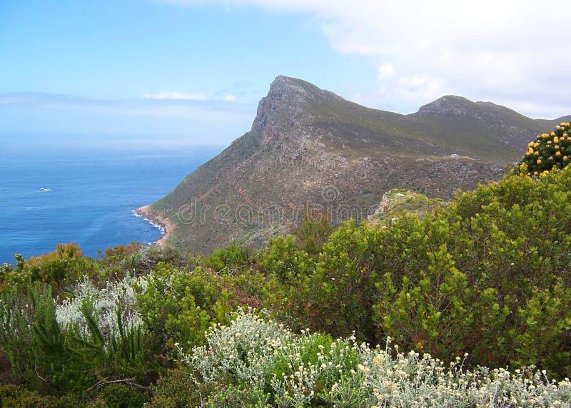 De kustlijn van de berg royalty-vrije stock foto