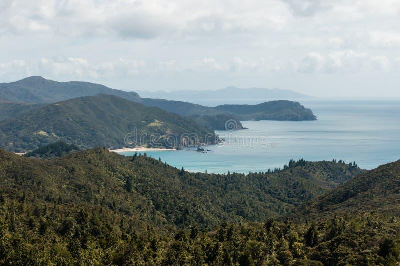 De kustlijn van het Coromandelschiereiland stock foto's