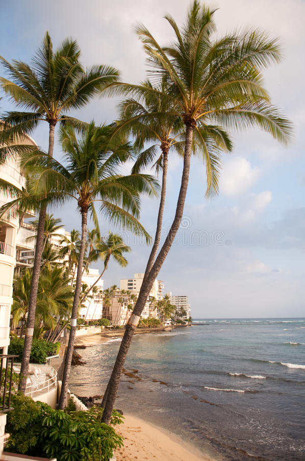 De Kustlijn van het Strand van Waikiki royalty-vrije stock foto