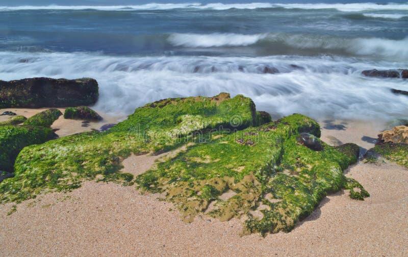 De Kustlijn van Maui stock foto's