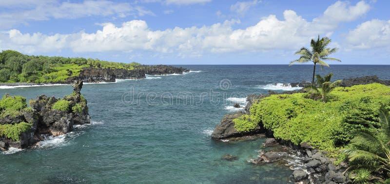 De kustlijn van Maui, Hawaï royalty-vrije stock afbeeldingen
