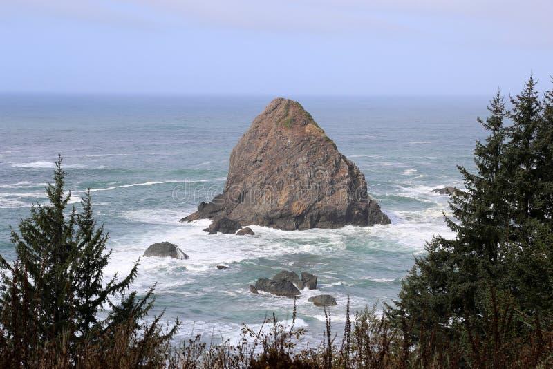 De Kustlijn van Oregon met bomen en rotsen stock afbeelding