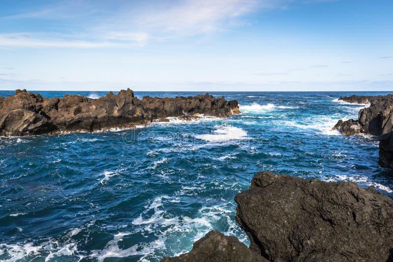 De kustlijnlandschap van de Azoren in Flores-eiland portugal stock afbeelding