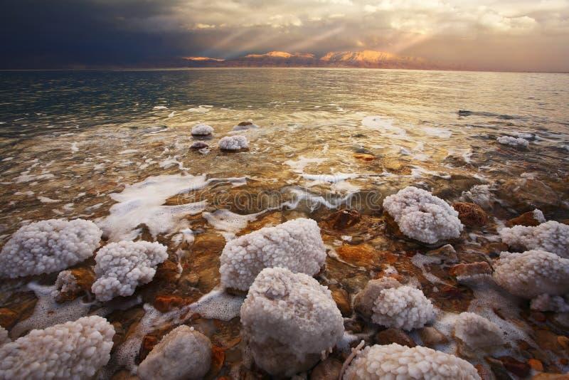 De kuststenen en de zoute verdaging stock afbeelding
