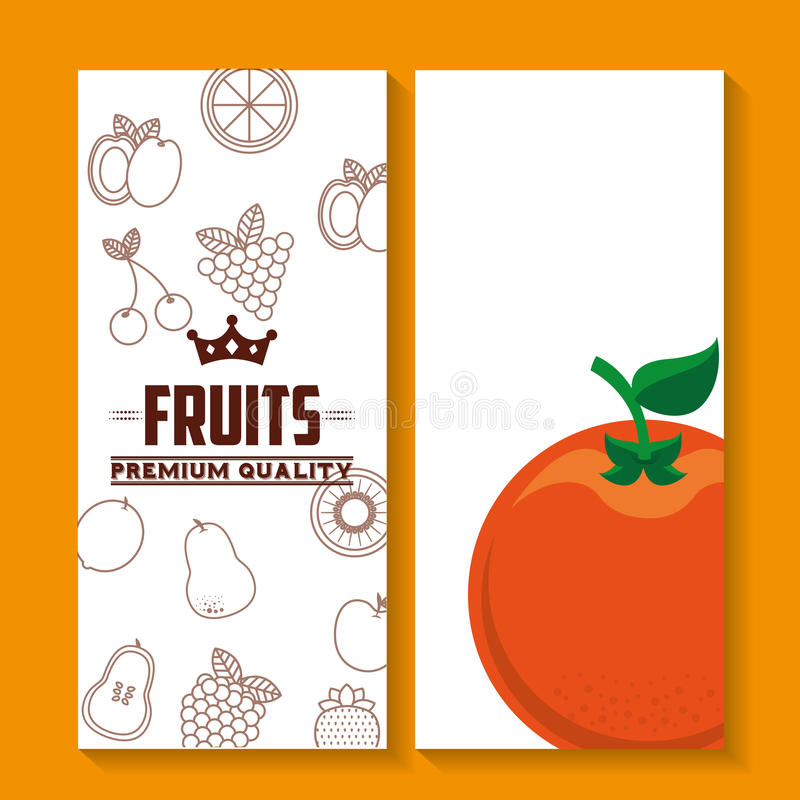 De kwaliteit van de vers fruitpremie vector illustratie