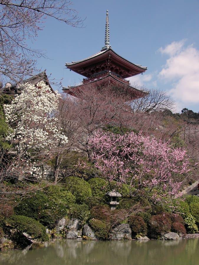 De kyomizudera-vroege lente stock foto's