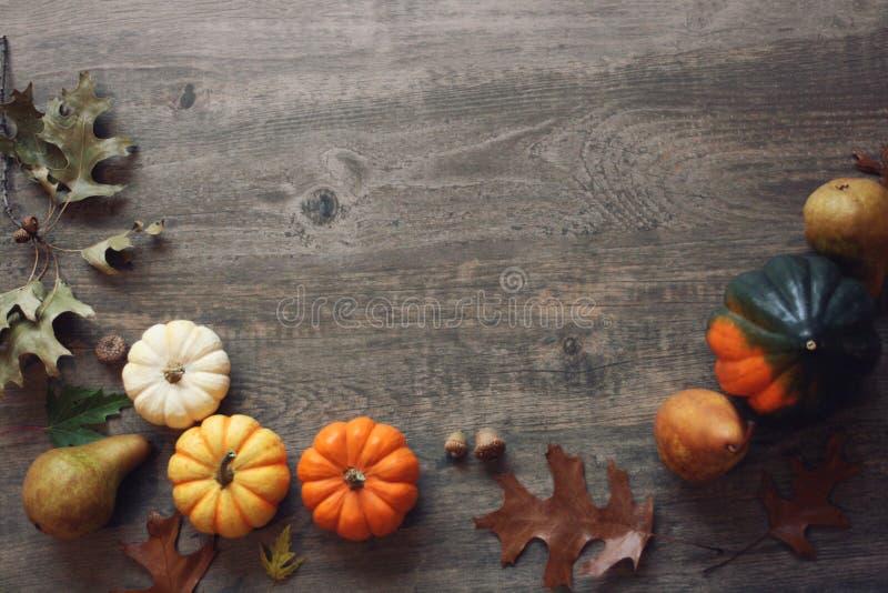 De la acción de gracias todavía de la estación la vida con las pequeñas calabazas, calabaza de bellota, fruta y caída coloridas s fotos de archivo libres de regalías