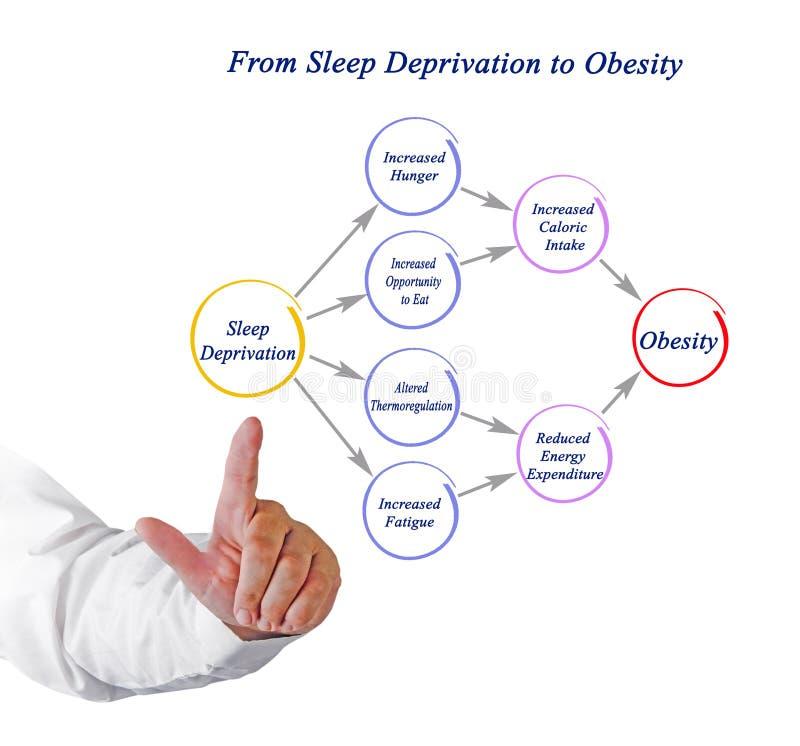 De la privación del sueño a la obesidad foto de archivo