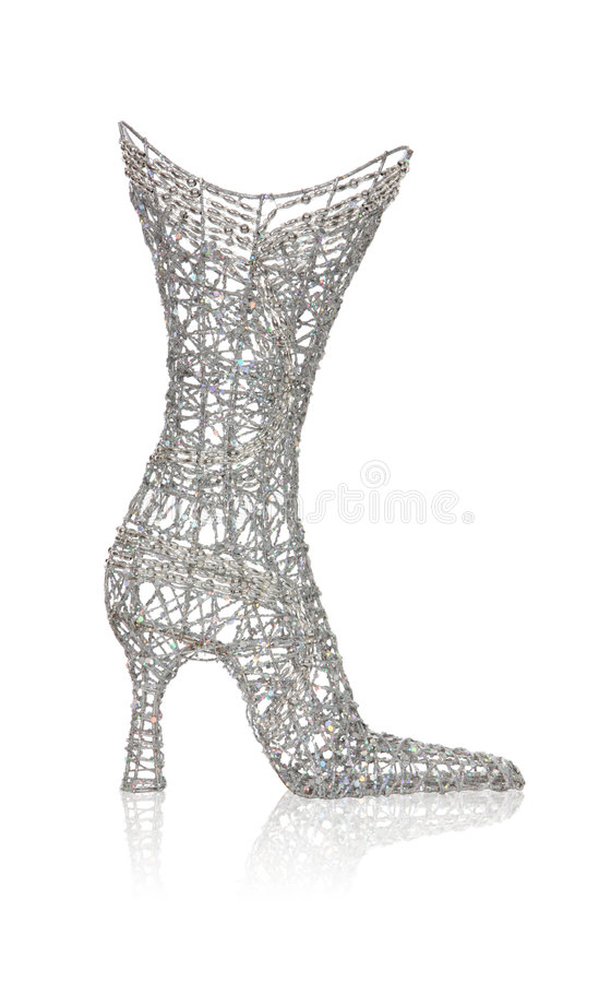De Laars van de Schoen van Womans stock foto