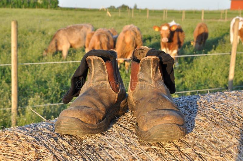 De laarzen van landbouwers stock fotografie