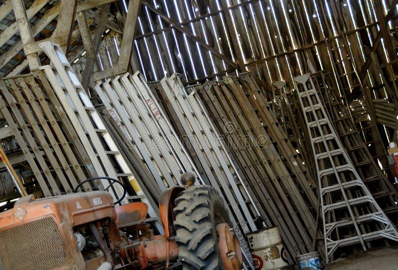 De Ladders van de boomgaard stock fotografie