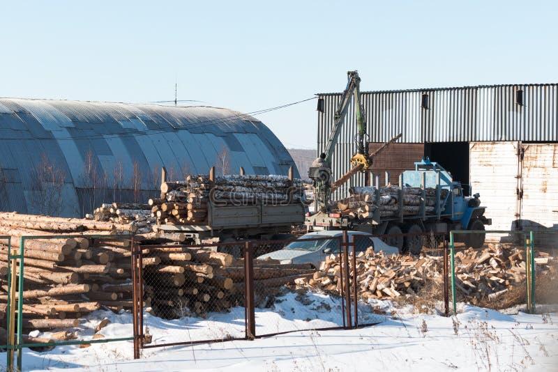 De lader laadt de logboeken in een vrachtwagenhout stock fotografie