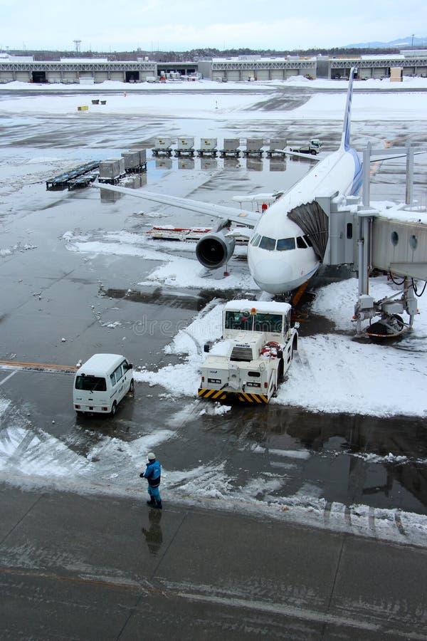 De lading van de ANAvlucht bij Chitose-luchthaven op een sneeuwdag Sapporo royalty-vrije stock foto