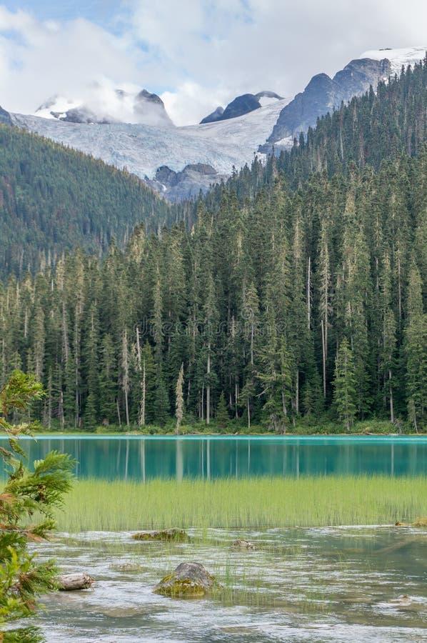 De lagere Gletsjer van Joffre Lake en Matier- royalty-vrije stock foto's