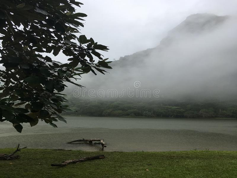 De lagune van San Carlos stock afbeelding