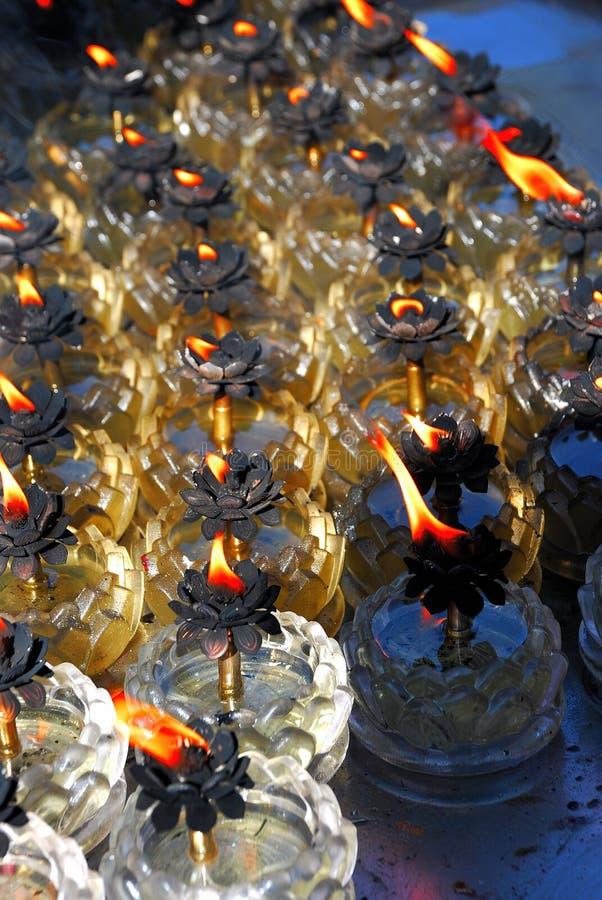 De lampen van Lotus stock afbeeldingen